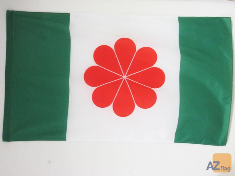 DRAPEAU TAÏWAN INDÍ?PENDANTISTE 90x60cm - DRAPEAU TAÏWANAIS NATIONALISTE 60 x 90 cm Fourreau pour hampe