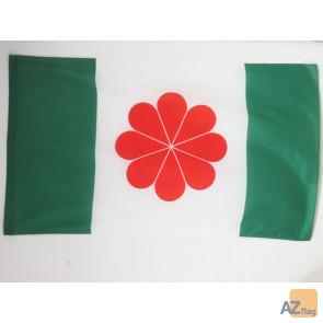 DRAPEAU TAÏWAN INDÍ?PENDANTISTE 150x90cm - DRAPEAU TAÏWANAIS NATIONALISTE 90 x 150 cm Fourreau pour hampe
